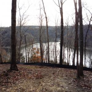 Center Hill Lake Tract 3 | Center Hill Lake Tract 3