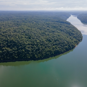 159 Acres at Center Hill Lake | 159 Acres at Center Hill LakeSelling in 9 Tracts