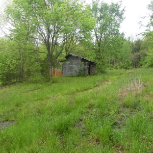 161 Opossum Hollow Rd Absolute Auction | 5+ acres in Watertown TN
